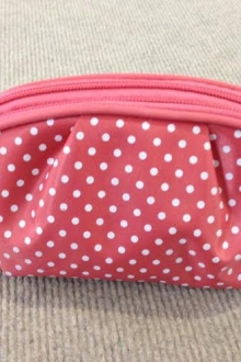 Polka Dots Small Wallet Bag