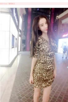 Deep V Leopard Printed Sexy Dress