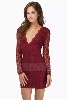 Deep V Lace Slim Dress