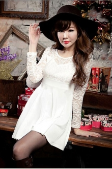 Lace Design Women Dress